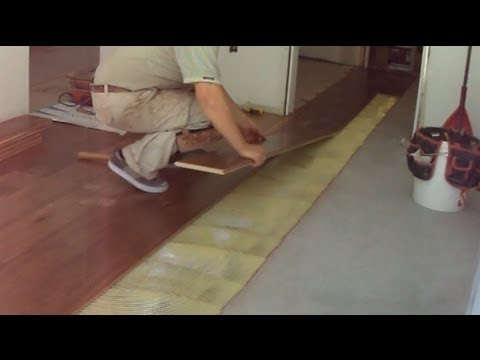 Walnut Hardwood Flooring Installation Glue Down Transitioning Between Two Rooms Mryoucandoityourself