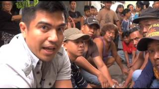 Doc Ferds Recio rescues three snakes in Metro Manila | Born to be Wild