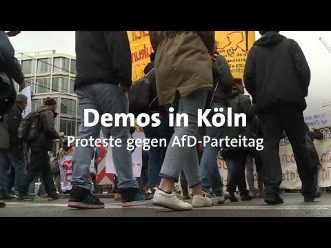 AfD-Parteitag in Köln