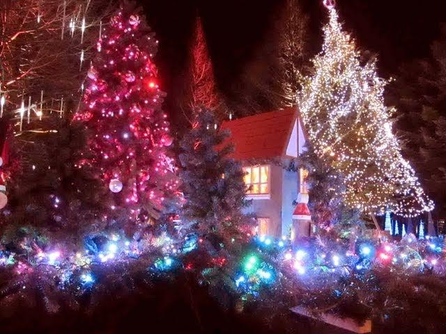 Karuizawa Christmas illumination ???????????????????Discover Nippon