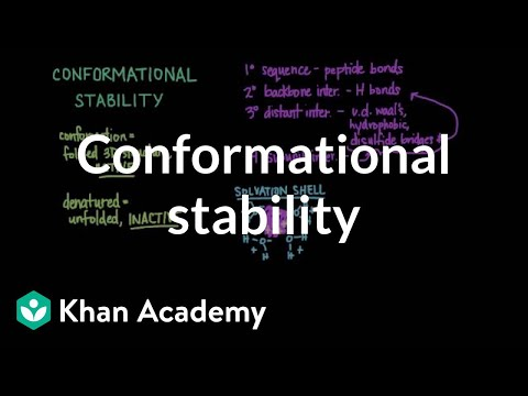 Conformational stability: Protein folding and denaturation | MCAT | Khan Academy