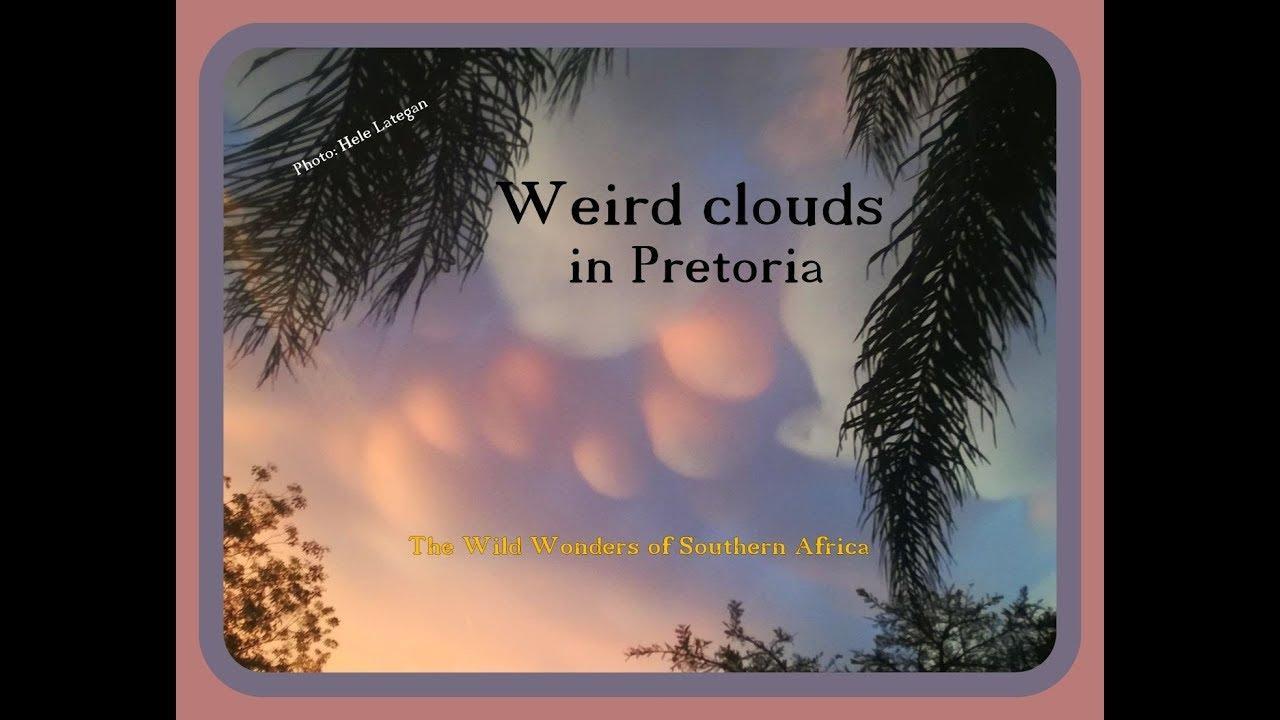 Download Strange clouds in Pretoria - Mammatus clouds