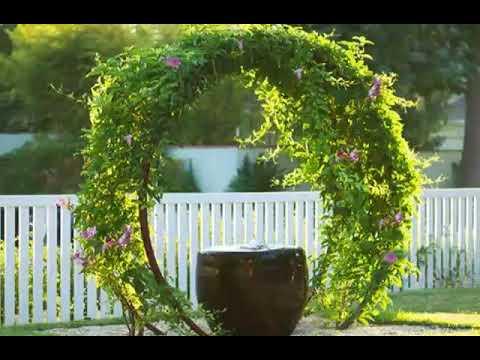 Garden Design Tip