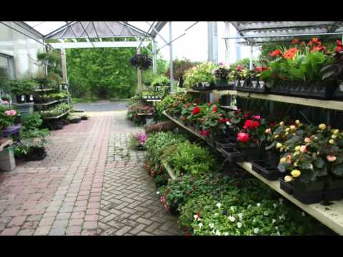 Perennial Harmony Garden Shop Waterford Connecticut YouTube