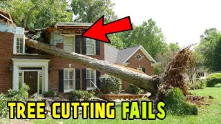 7 EXTREME Dangerous Tree Fails Compilation 2019 || Tree Falling in House