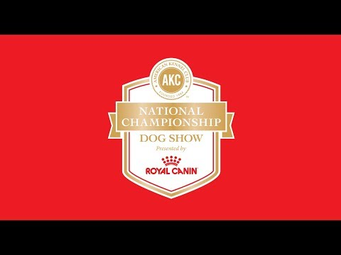 2018 AKC National Championship presented by Royal Canin