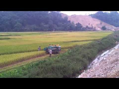 Máy gặt đập liên hợp M55 (Hạ Hòa - Phú Thọ) - haisonco.vn