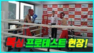 복싱,권투 프로테스트 현장!!