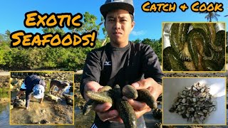 "Exotic Sea Cucumber Catch and Cook ""Kinilaw"""