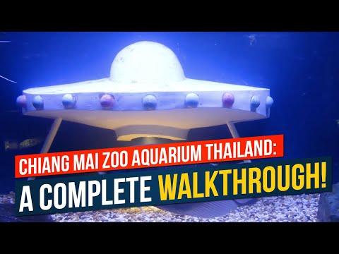 Chiang Mai Zoo Aquarium Thailand: A Complete Walkthrough!