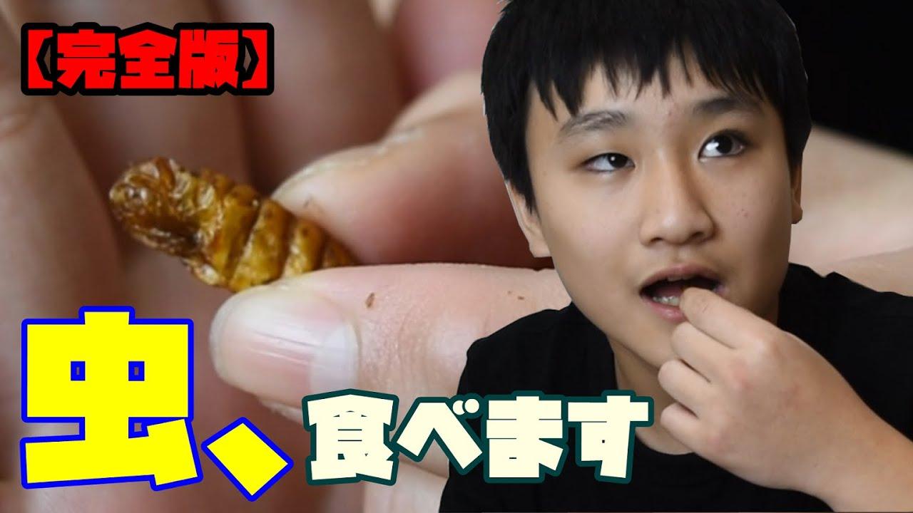 昆虫食を食べてみた!【完全版】
