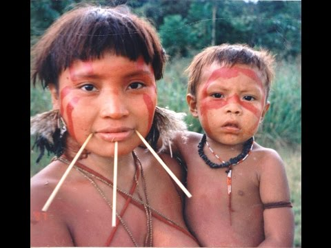 Facts About the Amazon Rainforest: 21 Amazon Facts
