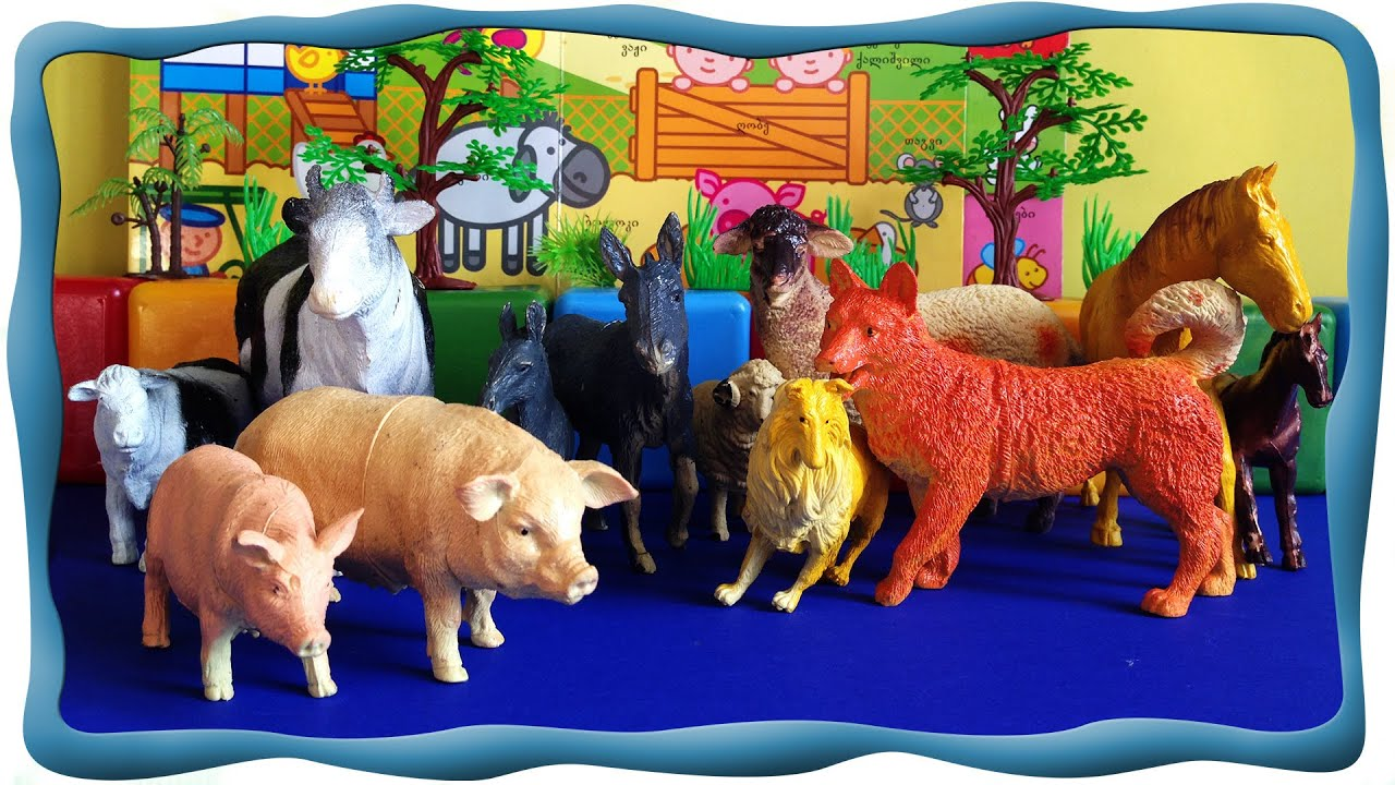 Домашние животные, Малыши животные выясняют кто они и чем могут гордиться? Обучающее видео для детей