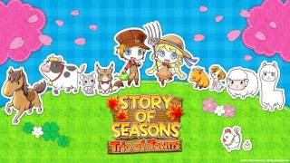 Story of Seasons: Trio of Towns OST - Festival #3 [HQ Line-in Rip]