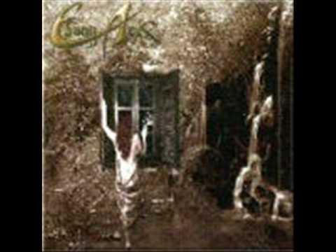Ebony Ark - A merced de la lluvia