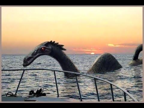 Карадагское чудовище в Крыму  Карадагский змей