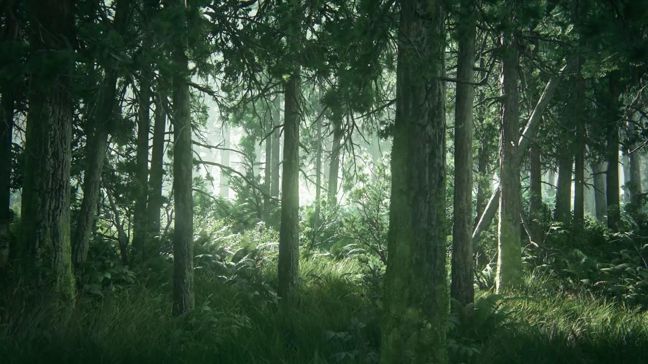 tlou2 beautiful forest hd desktop wallpaper (using wallpaper engine