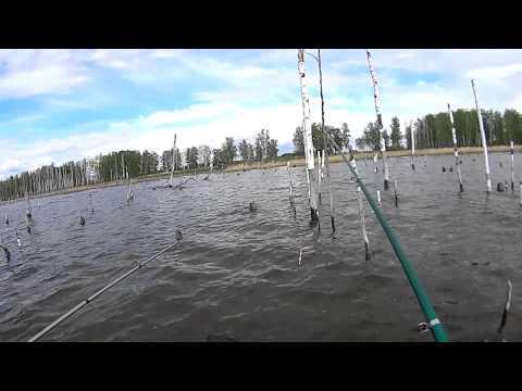 видео рыбалка челябинская обл щука октябрь