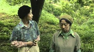 過疎化と高齢化が進む徳島県の上勝町で、シルバー世代の女性たちが中心...
