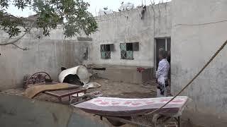 إصابة إمرأة بقصف لمليشيات الحوثي على الاحياء السكنية في مدينة حيس