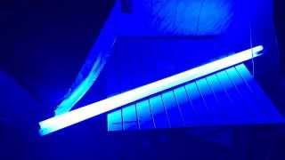 OSRAM L 36W/67 T8 G13 синяя, обзор люминесцентной лампы.