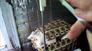 Setting up a knitting machine for absolute beginners