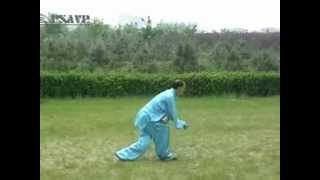 Che style Xingyi Quan : Five Elements and 12 Animals Form Boxing