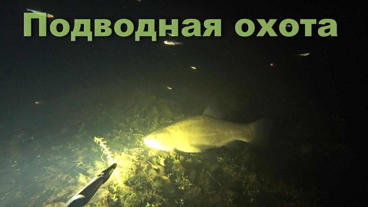 Подводная охота 2018. Ночь, чистые воды.