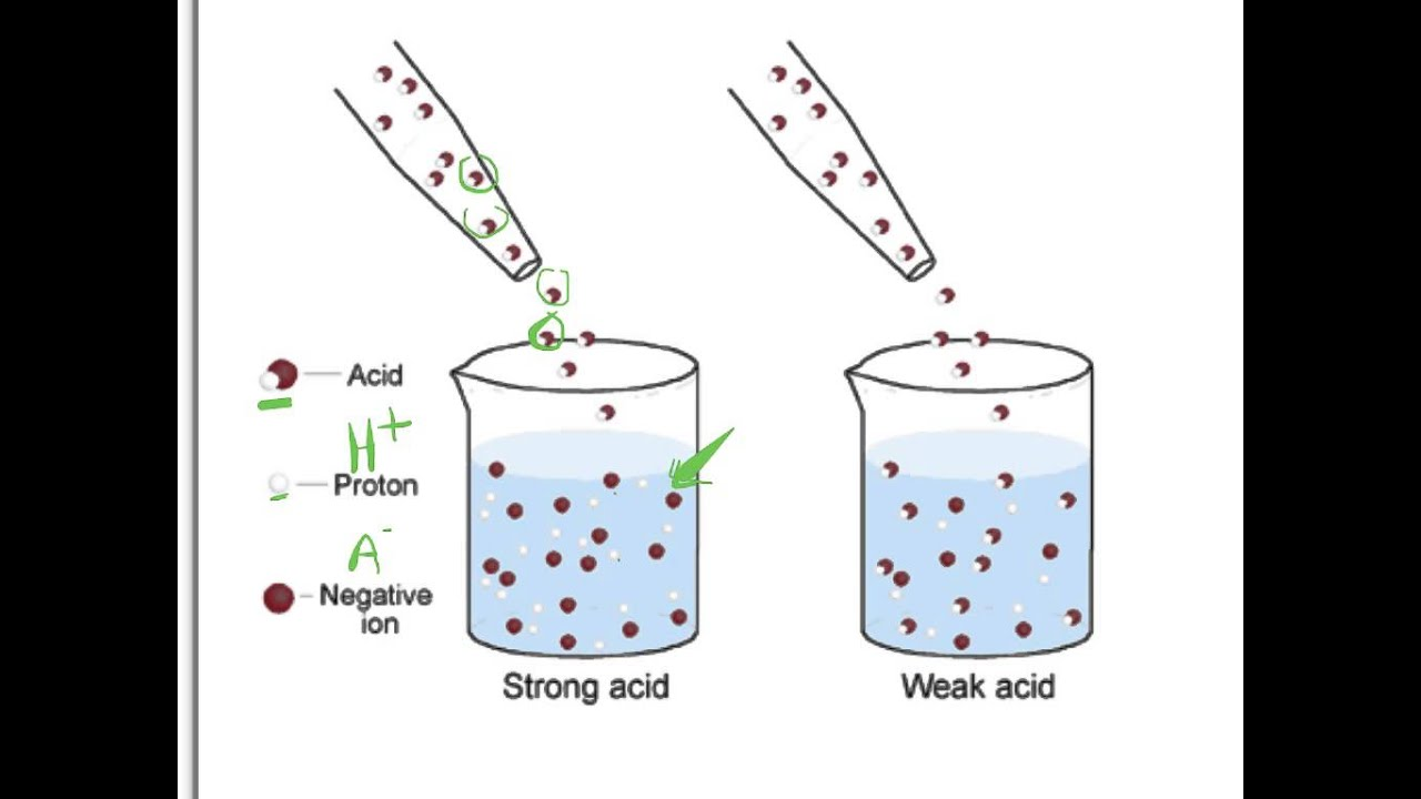 Acids and Bases Dissociation - YouTube