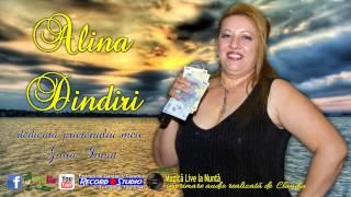 Alina Dindiri - Seara cand rasare luna, Plecai cu coasa-n spinare AUDIO LIVE