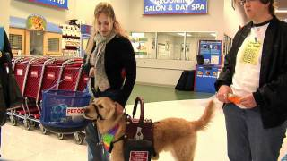 What You Can Do Presents - About Canine Partners For Life