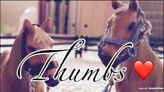 Schleich music video Thumbs