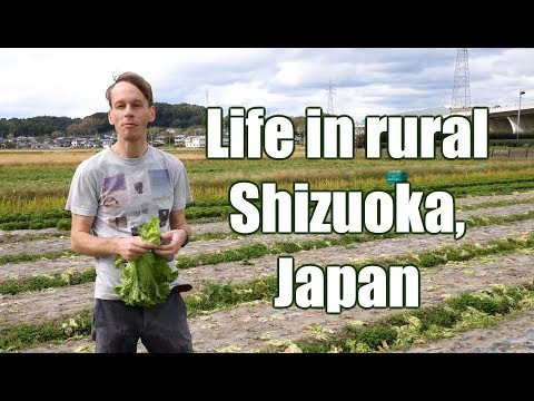 Life in rural Shizuoka Japan: Highlights from the countryside