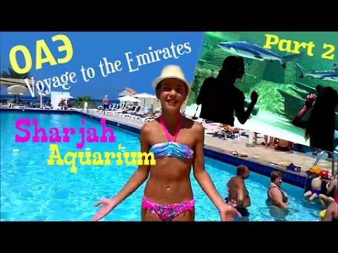 ШАРДЖА / Пляж и бассейны / Идем в Аквариум / SHARDJAH / Beach and pools / Aquarium