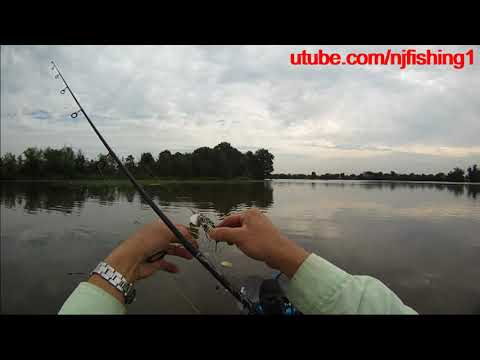 How To Use Jitterbug Lure For Top Water Fishing? Captain's Steve's Tips