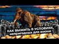 Магадан город который не вымрет Лучший пример для умирающих городов России mp3