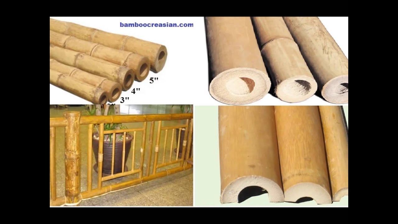 Unique Buy bamboo poles/cane/sticks for decorations-decorative bamboo  NZ75