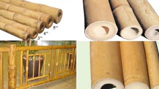 Buy Bamboo Poles/cane/sticks For Decorations-decorative Bamboo Poles,decorative Cane/sticks/rod
