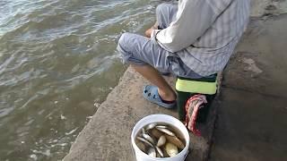 Рыбалка на набережной  г. Приморско-Ахтарска