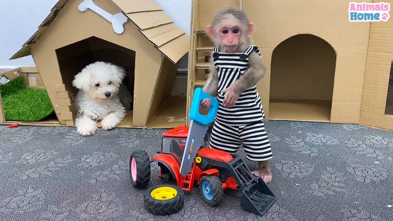 Naughty BiBi steals Amees car wheel