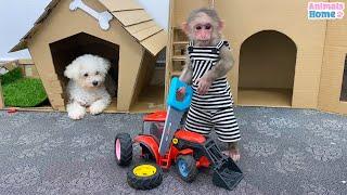 Naughty BiBi steals Amee's car wheel