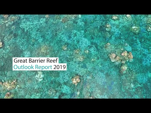 Great Barrier Reef Outlook Report 2019