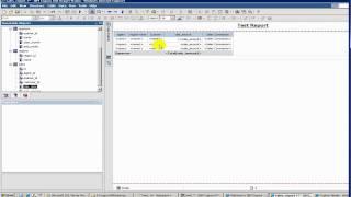 cognos tutorial 8 report studio filters
