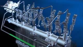 3D Common Rail