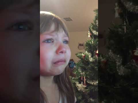 Little girl cries because kittens are cute