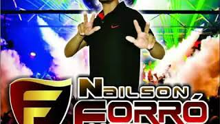 Baixar Sw4 Nailson Forró nejo CD promocional janeiro 2018
