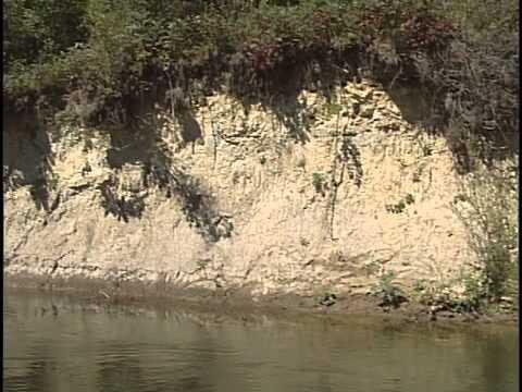 Dick Beardsley's Fishing Scene - Smallmouth Bass, Walleye, Catfish on the Ottertail River