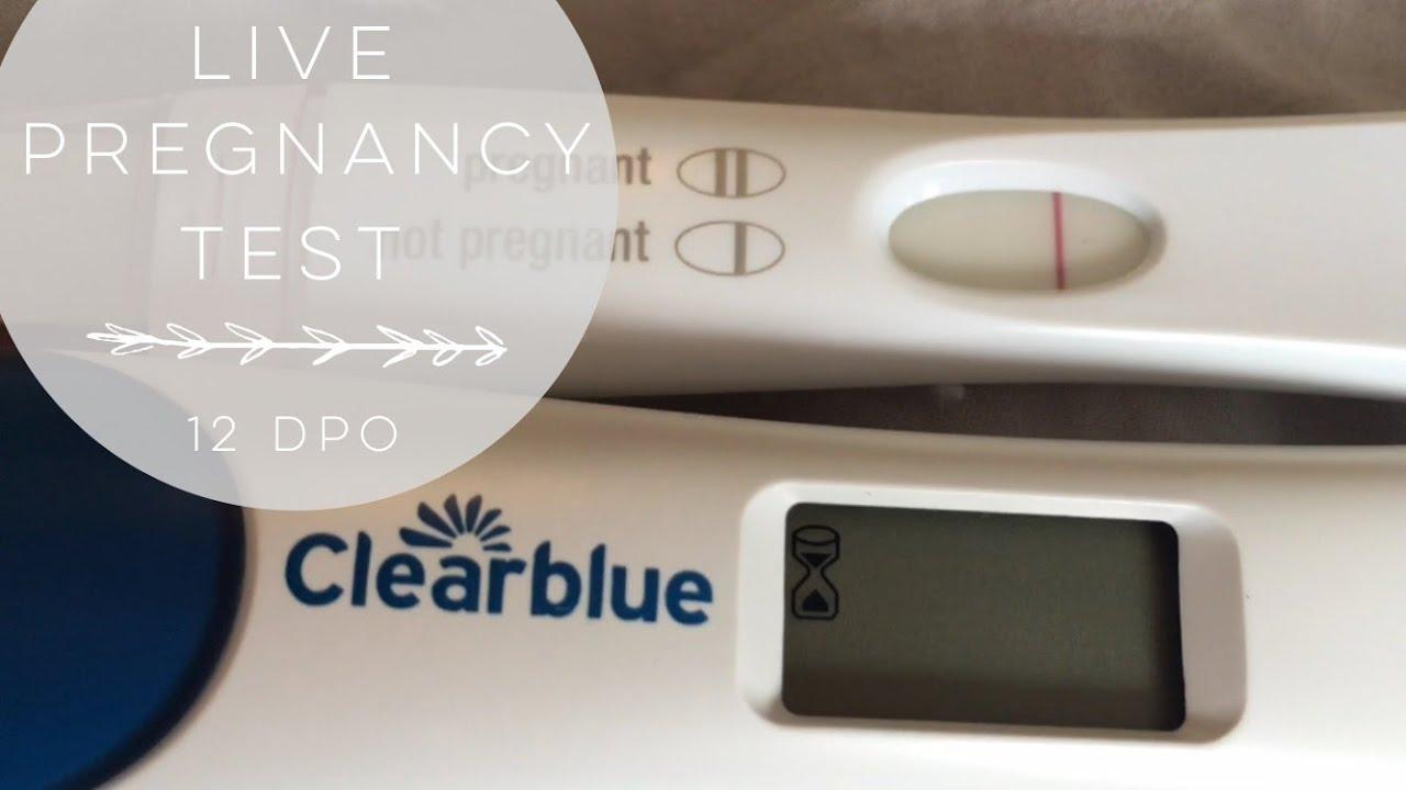 Live Pregnancy Test 12dpo Youtube