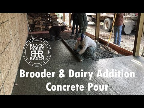 Pouring Concrete for Our Brooder and Dairy Addition