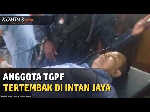 Anggota TGPF Tertembak Di Intan Jaya, OPM Mengaku Bertanggung Jawab